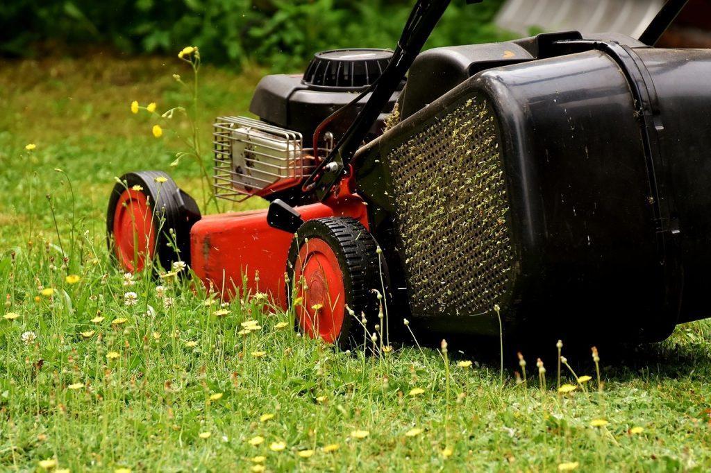 Gras maaien maaihoogte